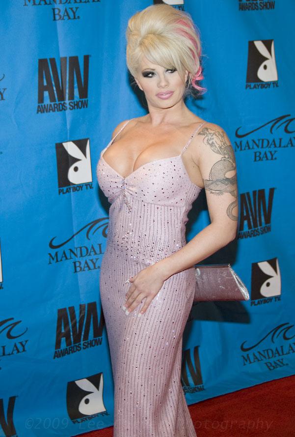2010 adult film awards